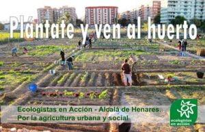 huertos comunitarios o vecinales