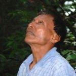 Un libro exclusivo de plantas medicinales gracias a una tribu del Amazonas.