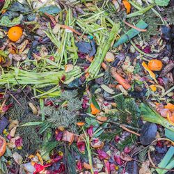 compost. material verde
