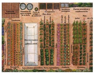 diseño de un huerto