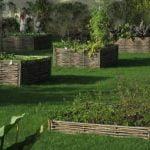 El diseño del huerto.