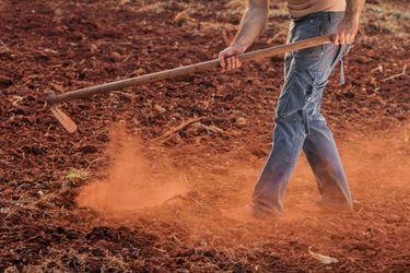 hombre trabajando la tierra.